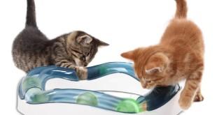 geschenke für katzenfreunde 10
